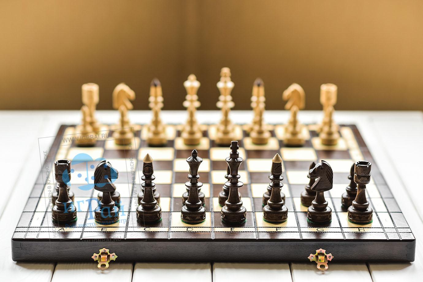 актриса, индийские шахматы картинки настолько